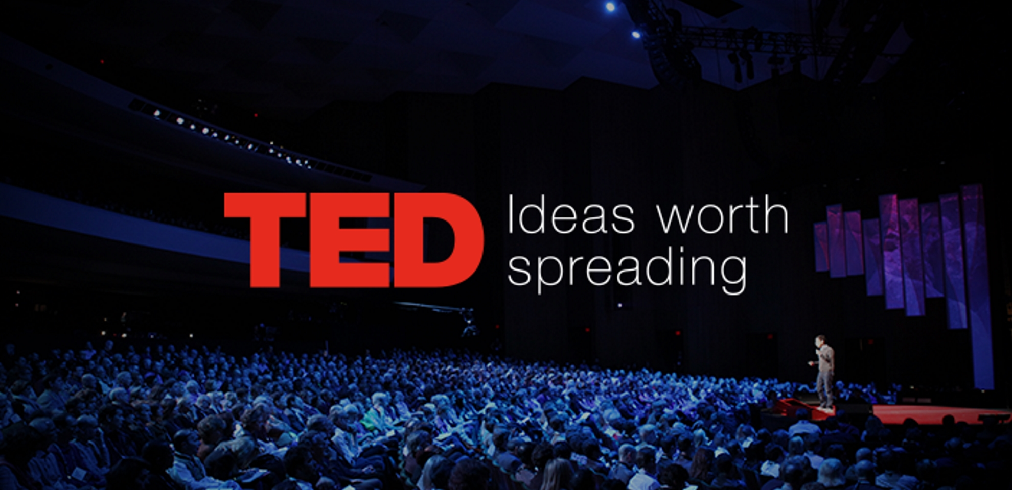 ted talk set punct set slimming stickers review
